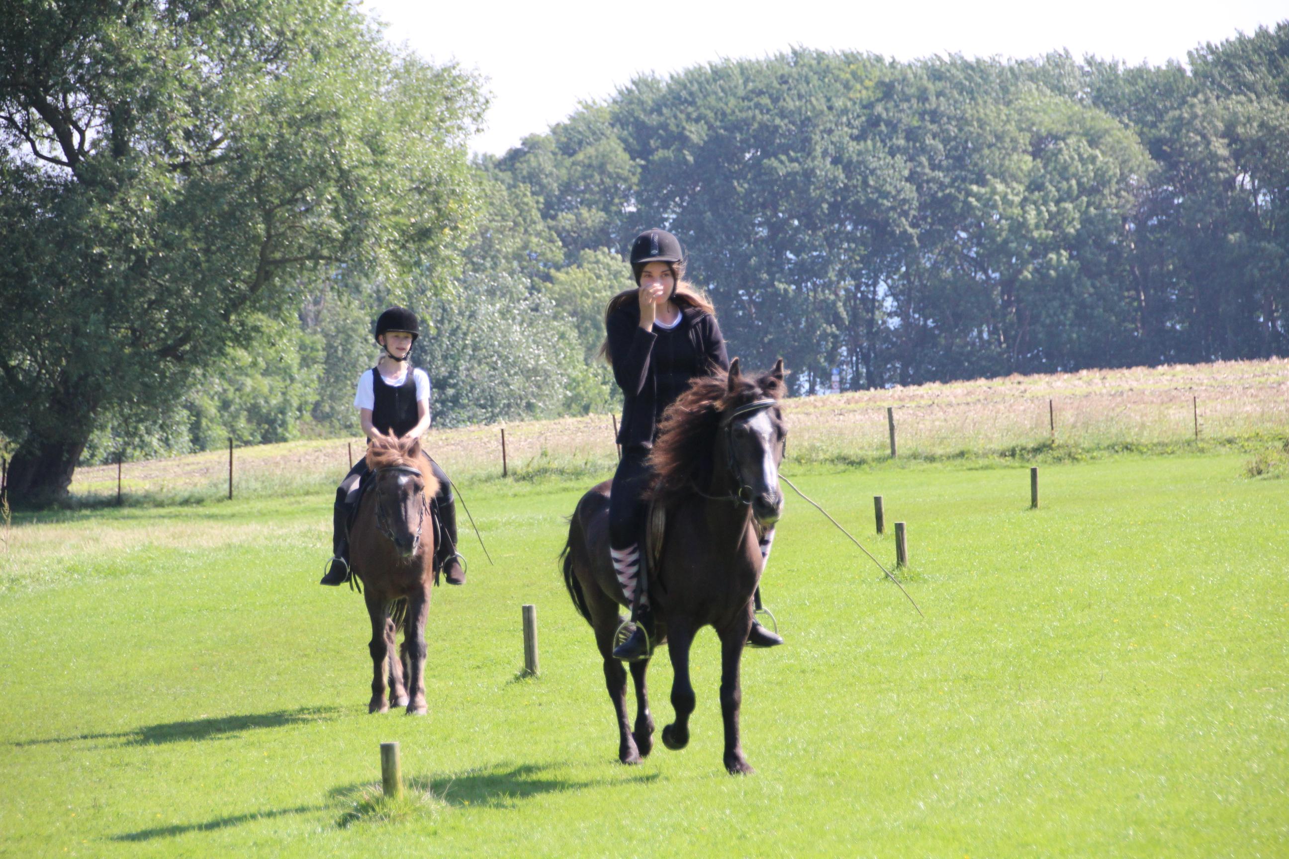 Pferd und Reiter - ein glückliches Doppel.